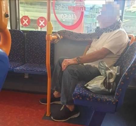 Passageiro viaja em ônibus usando jiboia como 'cachecol'