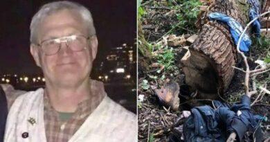 Homem preso sob árvore sobrevive quatro dias comendo folhas e insetos