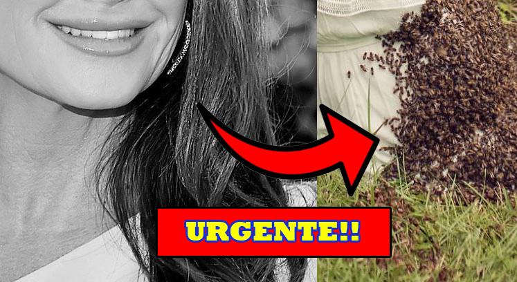 Urgente!! Querida atriz é hospitalizada após ser atacada por enxame de abelhas e imagens assustam internautas